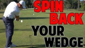 How to Spin Back Your Wedges