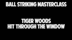 Tiger Woods Hit Through The Window