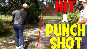 How To Hit A Punch Shot